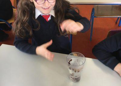 Science Week 2017 - 7